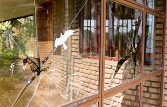 Fenster nach Vogelschlag, Foto: M. Putze