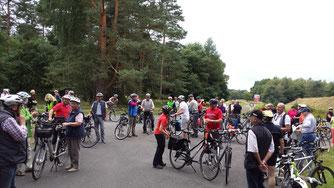 NABU-Radtour durch die Heideblüte der Senne. Foto: Marcus Foerster