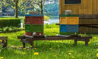 Konventionelle Bienenbeute (Foto: pixabay)