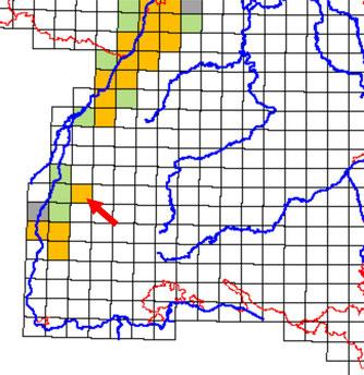 Knoblauchkrötenverbreitung in BW (der rote Pfeil zeigt auf Ettenheim)