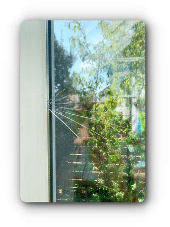 Hitzesprung im Glas