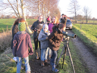 Wildgänse mit Spektiv beobachten. Foto: NABU-Woldenhof