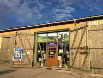 Froschmaul ein Findling auf dem Papenberg Oderbruch-blog.de