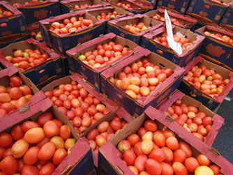 The Plum Tomatoes at Boston's Haymarket were $4 per Box