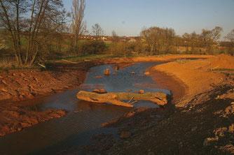 Im Bereich der Kleinmühle bei Albisheim erhielt die Pfrimm neue flache Ufer. Das Bachbett wurde aufgeweitet, das Gelände vormodelliert. Hier hat der Bach genügend Fläche und kann ausufern.