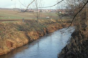 Kanalcharakter an der Pfrimm: Intensive Nutzung bis an das Ufer, spärliche Ufergehölze, Sohle eingetieft, Steinpackungen. Schlecht also.