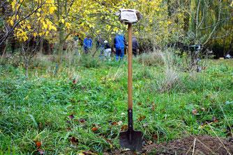 Herbstzeit ist Pflanzzeit – auch für Obstbäume. Foto: NABU/W. Peters