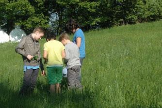 Mit ihrem neuen Wissen über Kräuter ziehen die Kinder los. - Foto: Britta Raabe