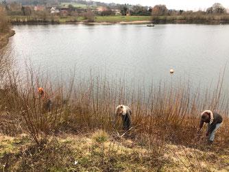 Die ehrenamtlichen arbeiten im Uferbereich. - Foto: Dr. Nick Büscher
