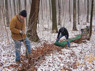 Die Ehrenamtlichen des NABU bauen den Krötenzaun im Schnee auf. - Foto: Kathy Büscher
