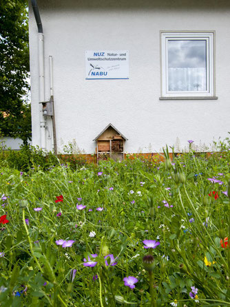 Das Natur- und Umweltschutzzentrum mit Blumenwiese und Insektenhotel. - Foto: Kathy Büscher