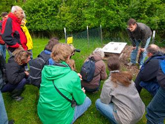 Imker Dennis Dieckmann erklärt den Besuchern auf der Streuobstwiese die Bienenkiste. - Foto: Kathy Büscher