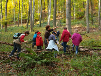 Besonders abseits der Wege gibt es im Wald viel zu entdecken. - Foto: Kathy Büscher