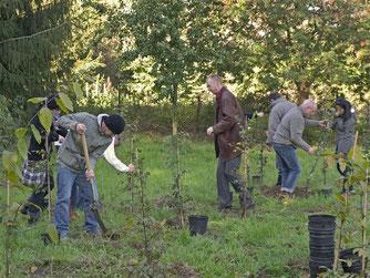 Am Heinekamp wird gearbeitet für den Klimaschutz. - Foto: Kathy Büscher