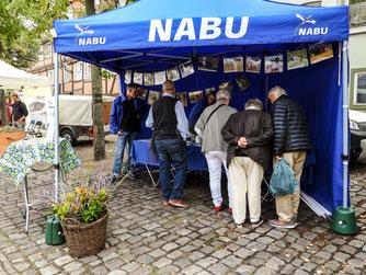 Der Info-Stand auf dem Kirchplatz. - Foto: Kathy Büscher