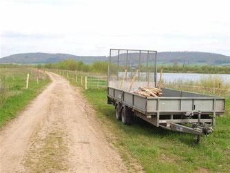 Der Weidezaun im Aufbau. - Foto: Kathy Büscher