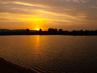 Sonnenaufgang in der Auenlandschaft. - Foto: Kathy Büscher