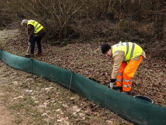 Entlang der Landesstraße bauen ehrenamtliche den Amphibienzaun auf. - Foto: NABU