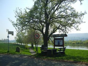 In Kohlenstädt am Weserradweg steht die Informationstafel. - Foto: Kathy Büscher