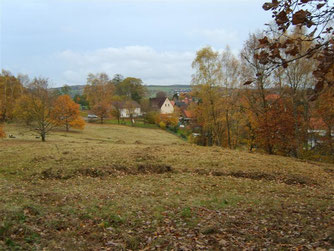 Knickbrink im November 2008 - Abgeschlossene Pflegemaßnahmen. - Foto: Kathy Büscher