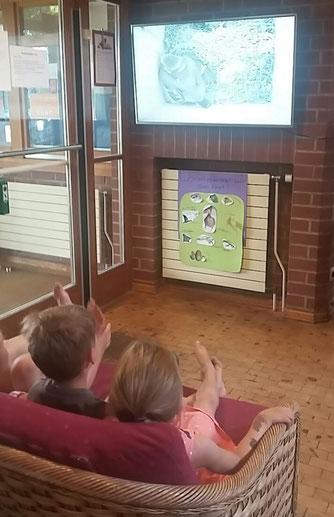Meisen-TV im Klassenzimmer. - Foto: Mona Walther