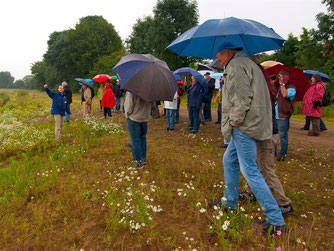 Die Exkursion war trotz des schlechten Wetters gut besucht. - Foto: Kathy Büscher