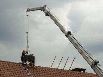 Das Nest wird mit einem Kran auf das Dach transportiert. - Foto: Nick Büscher