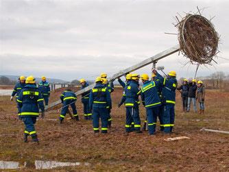 Der Mast ist sehr schwer. - Foto: Kathy Büscher