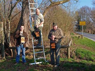 Die Aktionsgemeinschaft beim Aufhängen der Nistkästen. - Foto: Kathy Büscher