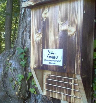 Fledermaus-Spaltenkasten als Sommerquartier. - Foto: Kathy Büscher