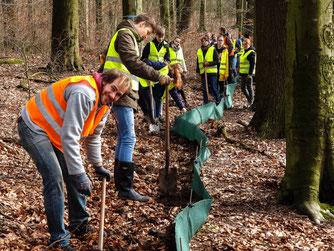 Die Schüler erhalten praktische Einblicke in den Naturschutz. - Foto: Kathy Büscher