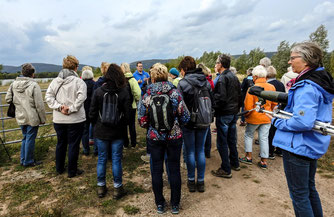 Am Stichweg gab es Infos zum Beweidungsprojekt. - Foto: Kathy Büscher