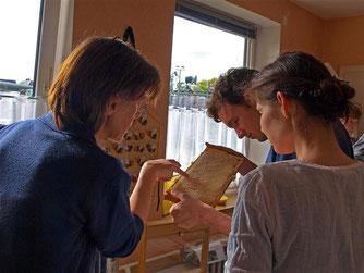 Hier wird gerade eine Bienenwabe gezeigt. - Foto: Kathy Büscher