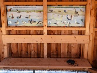 Zwei der neuen Tafeln im hinteren Bereich informieren über die Hohenroder Wasservogelwelt. - Foto: Kathy Büscher