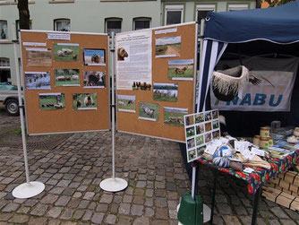 Beim diesjährigen NABU-Stand auf dem Bauernmarkt drehte sich alles um Schaf-Beweidung und deren Wollprodukte. - Foto: Kathy Büscher