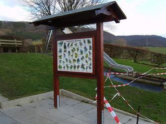 Einheimische Singvögel. - Foto: Kathy Büscher
