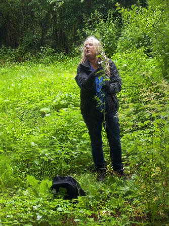 Birgit Brinkmann erzählt Wissenswertes rund um die Brennnessel. - Foto: Kathy Büscher