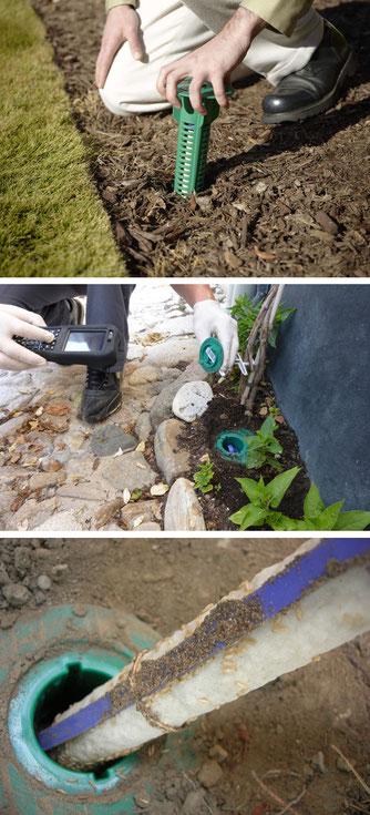 ©SENTRI TECH, pose et contrôle du piège à appât anti-termites