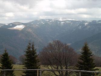 Feldberg (1493m)