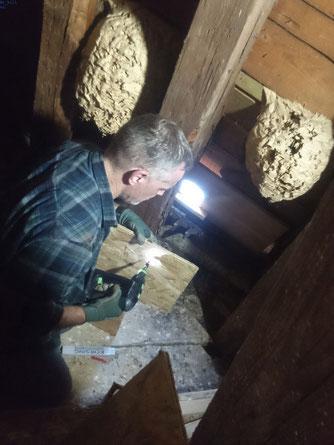 Markus Polifka beginnt mit den Bauarbeiten