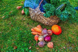 Gartengemüse so lecker (hu)