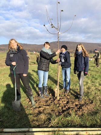 Eine Gruppe von jungen Frauen pflanzen gemeinsam einen Obstbaum.