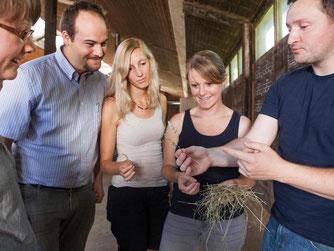 Wer sich auf Ökolandbau spezialisieren will, kann nach dem Studium am Traineeprogramm Ökolandbau teilnehmen. Das ist ein Programm initiiert im Rahmen des Bundesprogramms Ökologischer Landbau und andere Formen nachhaltiger Landwirtschaft (BÖLN). Foto: Benj