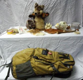Der Wolfsrucksack mit Inhalt. Foto: Martin Krauß