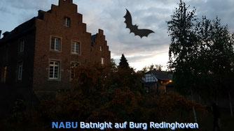NABU-Batnight auf Burg Redinghoven Quelle: Steffi Krieg