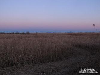画像:2019/01/18 第一調節池の東の空(ちきゅうえいとビーナスベルト)