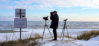 Vogelbeobachtung im Inselnorden / Foto: NABU Insel Usedom, W. Becker