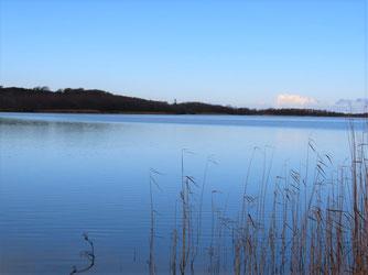 Wasservogelzählung am Schmollensee bei schönstem Sonnenschein / Foto: NABU Insel Usedom, B. Schirmeister