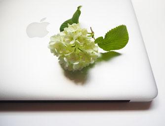 マック(パソコン)と花、就労継続支援B型、講師、先生、デザイン