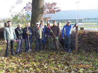 Fleißige Helfer haben eine Benjes-Hecke am Brackeborn angelegt! - Foto: Stefan Wagner